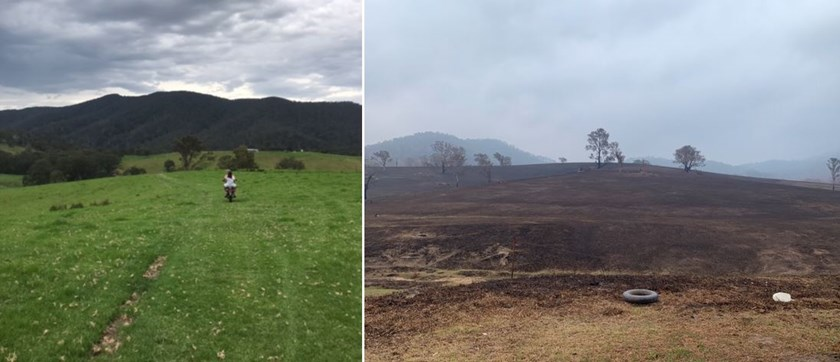 Before and after shots from Millie Boyle's family farm.