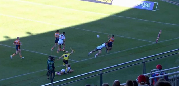 Rd 16: Dragons v Knights - No Try 24th minute