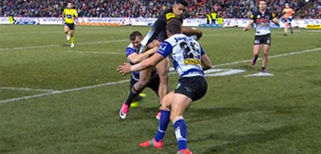 Rd 21: Panthers v Bulldogs (Hls)