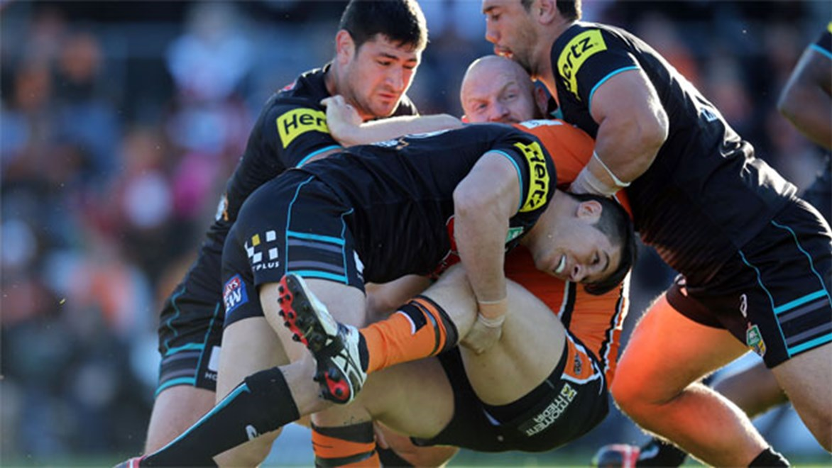 Folding time... Panthers hitman cuts Wests Tigers prop Keith Galloway last Sunday.
