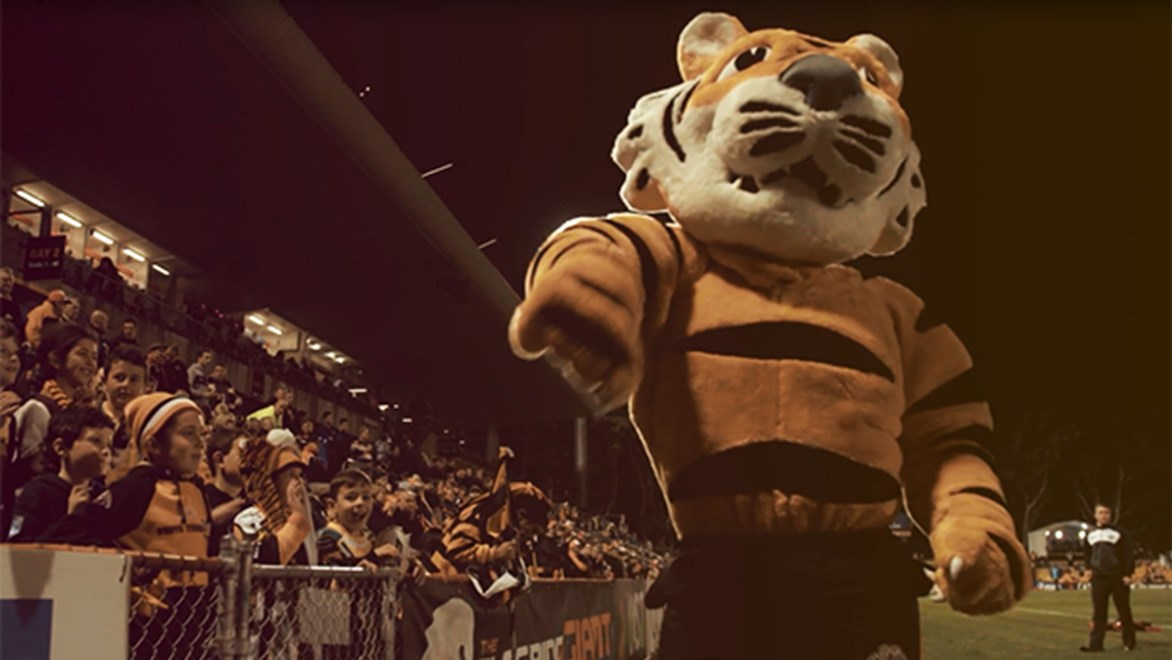 "Have you ever wondered what it would be like to be an NRL club mascot? Well here's the story of ""Timmy the Tiger""."