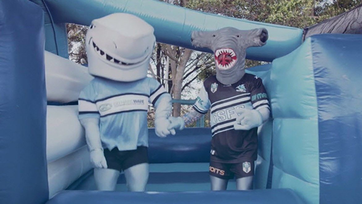 Reefy and MC Hammerhead are the club mascots of the Cronulla Sharks.