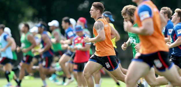 Ponga and Pearce give Knights plenty to build on