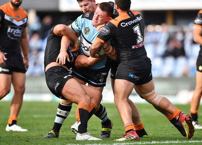 Sharks lock Paul Gallen.