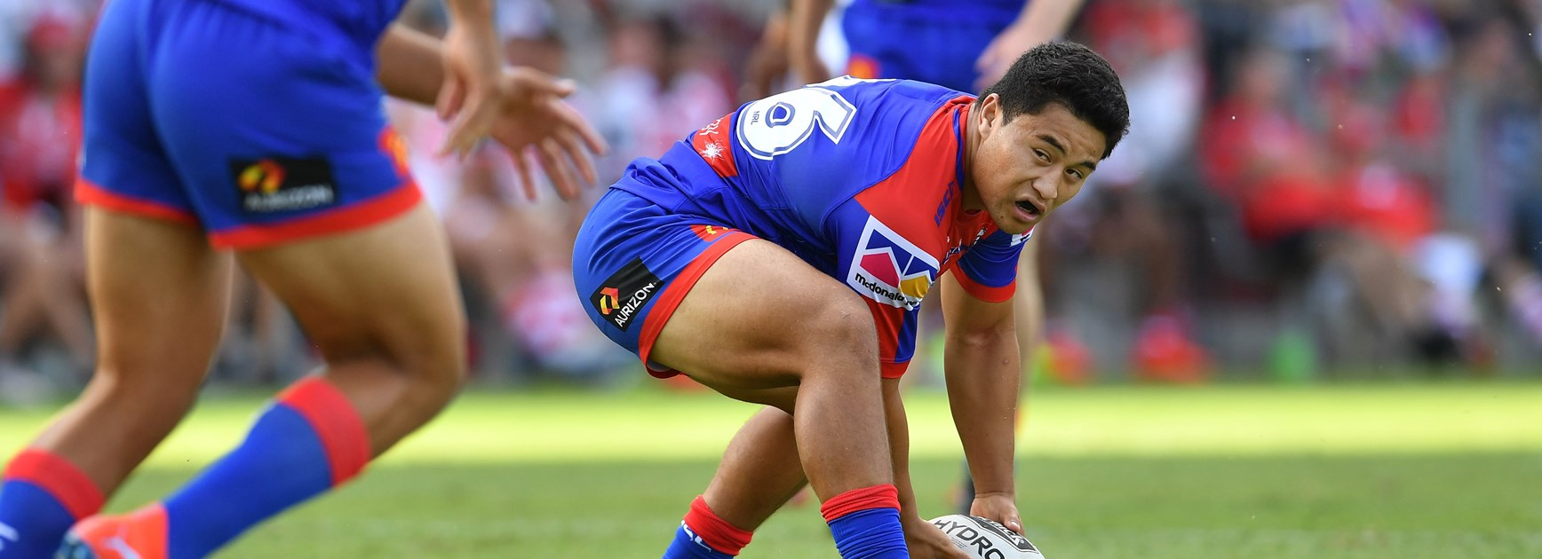Knights recruit Mason Lino.