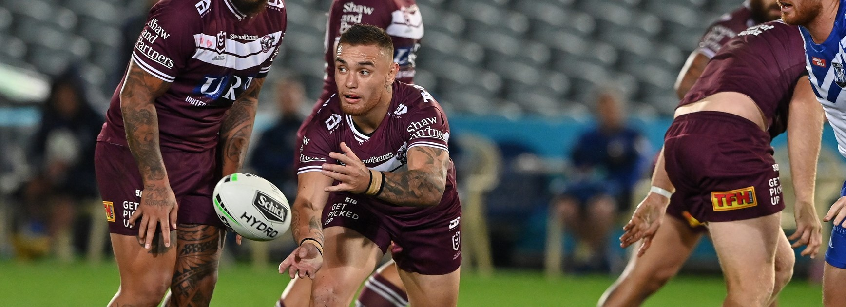 Levi lands on his feet at Sea Eagles nest